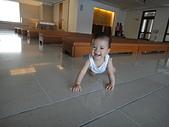 小Baby相片-2:DSC08591.JPG