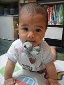 小Baby相片-2:DSC08141.JPG