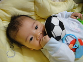 小Baby相片-2:DSC07637.JPG
