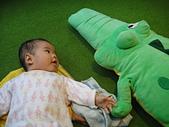 小Baby相片-2:DSC07695.JPG