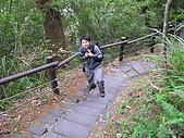 谷關七雄波津加山:20081116---P037.JPG
