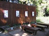谷關七雄馬崙山挑戰:20090111---P127.JPG