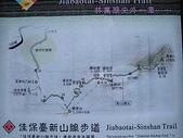谷關七雄馬崙山挑戰:20090111---P014.JPG