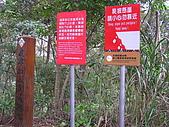 谷關七雄波津加山:20081116---P042.JPG