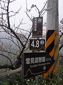雪見遊憩區與司馬限林道完美恐怖組合:20080125--P025.JPG