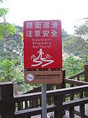 谷關七雄波津加山:20081116---P030.JPG