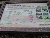谷關七雄波津加山:20081116---P018.JPG