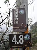 雪見遊憩區與司馬限林道完美恐怖組合:20080125--P026.JPG