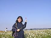 20091128台中後山武陵農場露營:20091128---P015.JPG
