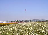 20091128台中後山武陵農場露營:20091128---P016.JPG