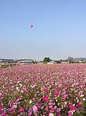 20091128台中後山武陵農場露營:20091128---P023.JPG