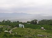 20090419水雲三星鳥嘴山探險:20090419---P013.JPG