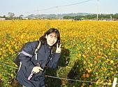 20091128台中後山武陵農場露營:20091128---P030.JPG