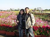 20091128台中後山武陵農場露營:20091128---P033.JPG