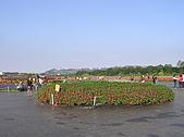 20091128台中後山武陵農場露營:20091128---P037.JPG