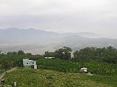 20090419水雲三星鳥嘴山探險:20090419---P017.JPG