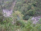 谷關七雄波津加山:20081116---P048.JPG