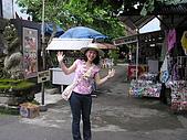 巴里島愛未眠之旅:20081209---P021.JPG