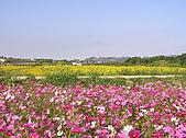 20091128台中後山武陵農場露營:20091128---P050.JPG
