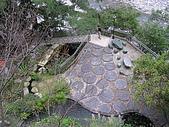 谷關七雄波津加山:20081116---P025.JPG