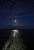 大甲鎮瀾宮:月光旅行.jpg