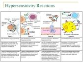 生理用圖:hypersensitivity-reactions-lecture-notes-4-728.jpg