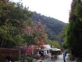 武陵農場_20081206:1015920471.jpg