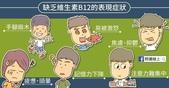 108.3.22三年級健康飲食宣導:vitB12.jpg