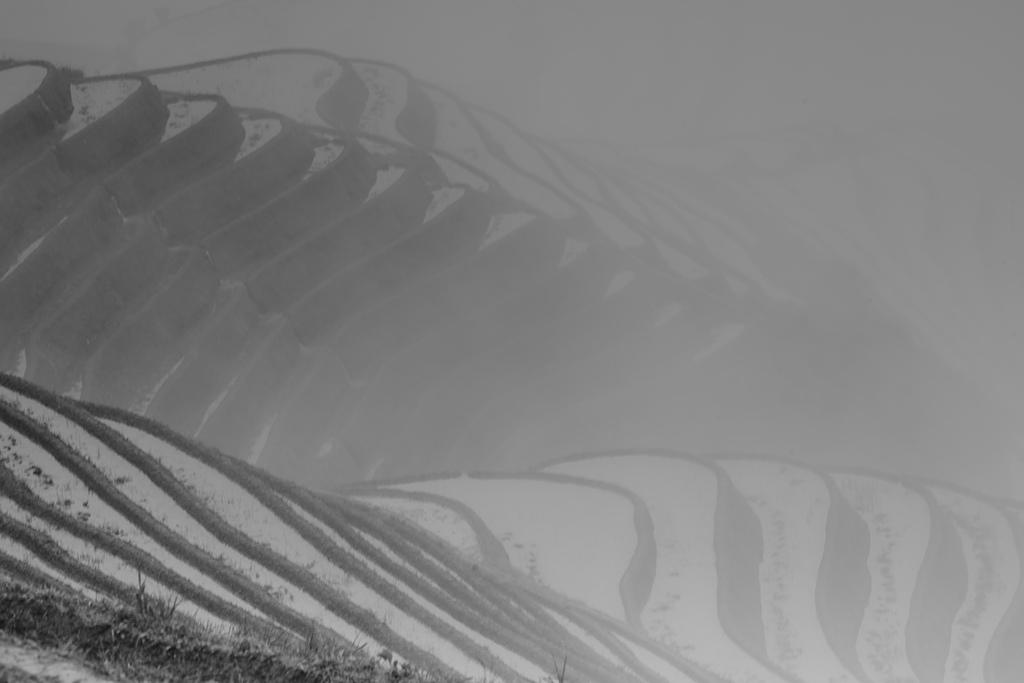 印象龍脊:18A_2394.jpg