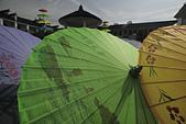 甲路紙傘製作:_06A1115.jpg