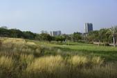高雄都會公園:_DSC4462.jpg