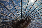 甲路紙傘製作:_06A1120.jpg
