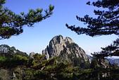 小品黃山:_DSC4058.jpg