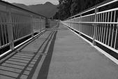 清淨高空景觀步道:_DSC4864.jpg