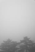 意象黃山:_DSC3832.jpg