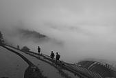 龍脊採風:18A_2436.jpg