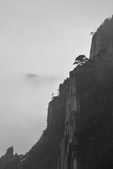 意象黃山:_06A9599.jpg