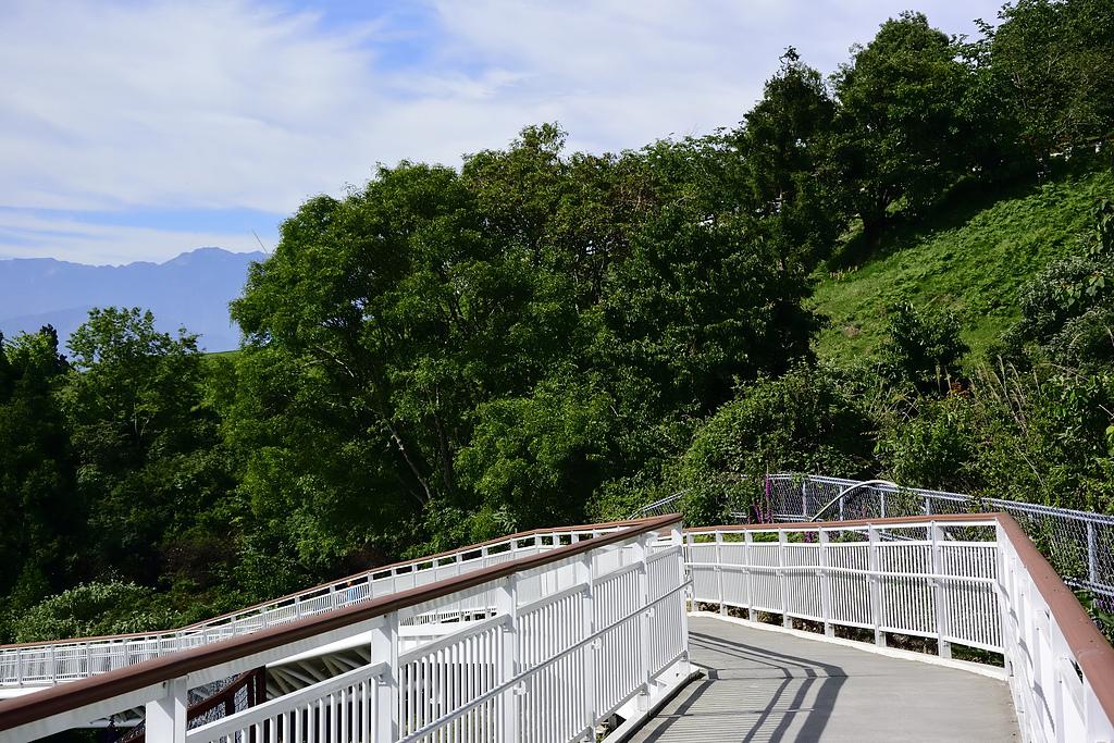 清淨高空景觀步道:_DSC4858.jpg