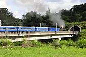火車嘟嘟:_05B5795.jpg