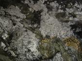 馨漩國樂團綠島之旅:DSC01603