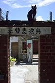 喜樹老街:_DSC2881.jpg