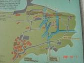 金門之旅:DSC02997