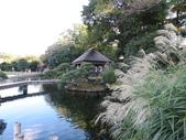 岡山城と後樂園の巡り:IMG_1612.JPG
