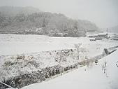 日本 20080202-010:ap_20080223121522595.jpg
