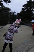 [韓國]首爾冬之旅。DAY3:DSC00816.JPG