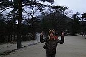 [韓國]首爾冬之旅。DAY3:DSC00817.JPG