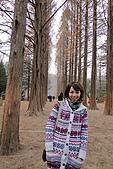 [韓國]首爾冬之旅。DAY3:DSC01104.JPG