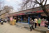 [韓國]首爾冬之旅。DAY3:DSC01009.JPG