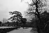 [韓國]首爾冬之旅。DAY3:DSC00826.JPG