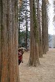 [韓國]首爾冬之旅。DAY3:DSC01132.JPG